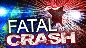 Seven-Year-Old killed in  car accident on Sardis Lake Road